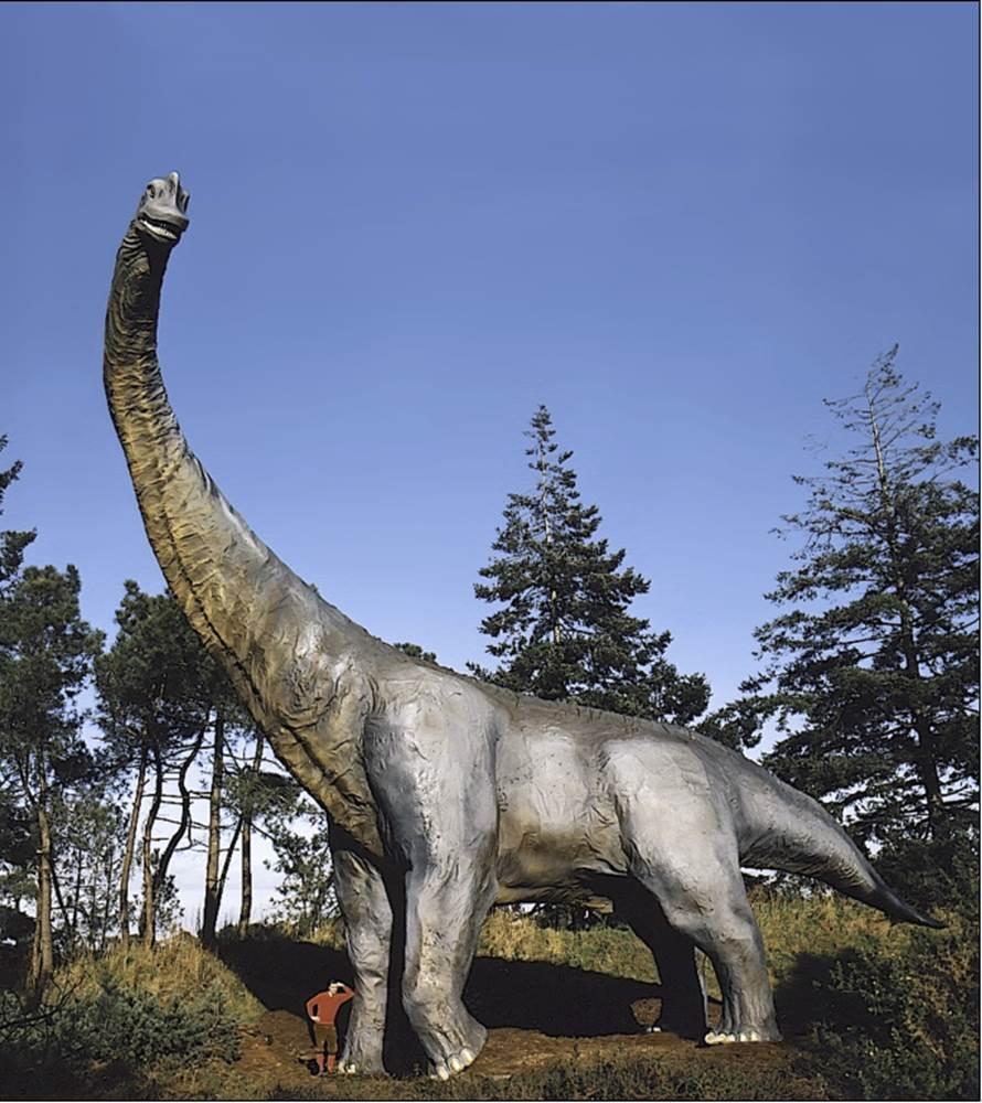parc de prehistoire de bretagne - malansac - morbihan bretagne sud ©