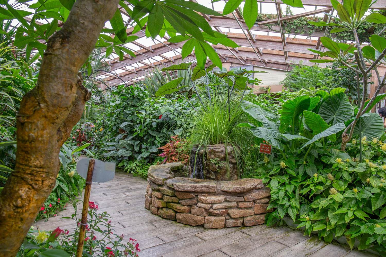 jardin-aux-papillons-morbihan-bretagne-sud-28 © © Magalie BARRE