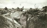 Centenaire de la Grande Guerre � Sarzeau