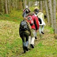 Sorties randonnées avec Ambon Sports et Loisirs