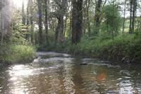 La pêche sur le Pays de Guer