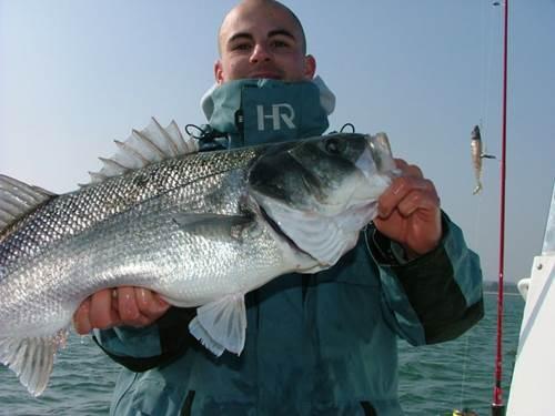 Bar Ouf Pêche Sportive