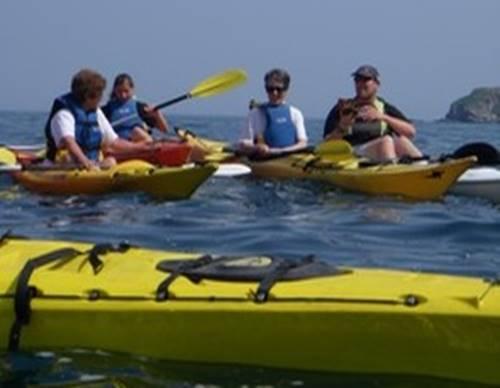 Sortie kayak nature 2015