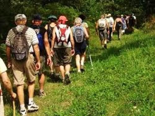 Randonnées pédestres en groupe autour de Malestroit