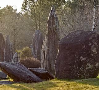 Les Menhirs de Monteneuf - Archéosite de Brocéliande