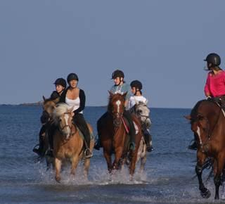 Erdeven Equitation