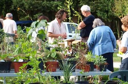 Bourse aux Plantes d'Automne