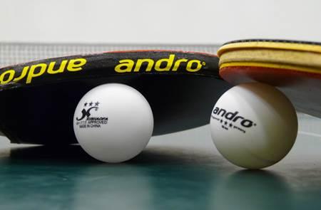 Troc et puces d'Avril du Tennis de Table