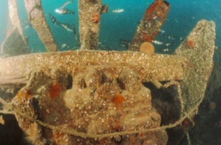 Plongée sous-marine Angélus Plongée