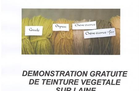 Démonstration gratuite de teinture végétale sur laine