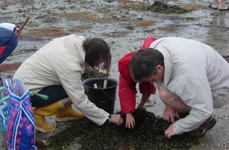 Sortie Découverte de la Pêche à Pied Côté Océan avec Gwen